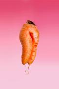 Karotte Unique  Orange Pink Fuchsia
